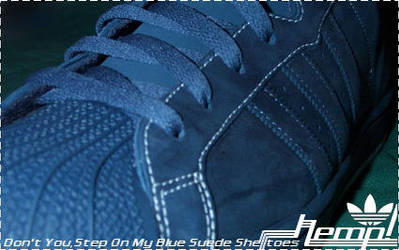Blue Suede by hempingway