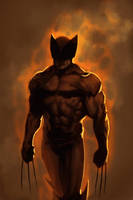 WOLVERINE WEDNESDAY - 50 by reau