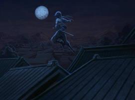 Ninja Escape by reau
