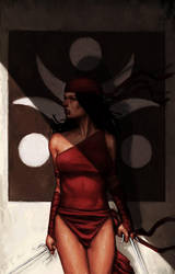 ELEKTRA ASSASSIN by reau