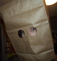 So I saw this paper bag... by ManicStair