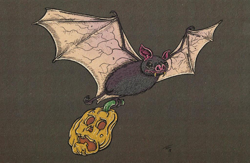 Bat-o-Lantern by recipeforhaight