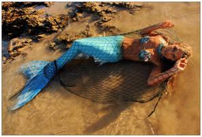 Mermaid snared 1 by wildplaces