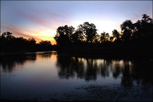 Murray River reflections 1 by wildplaces