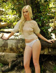 Kahli - sheer cream top 8 by wildplaces
