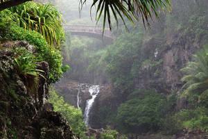 Misty bridge 1 - Maui by wildplaces