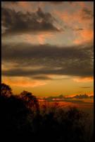 Albury pre-dawn 2 by wildplaces
