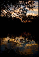 Murray River sunset 2 by wildplaces