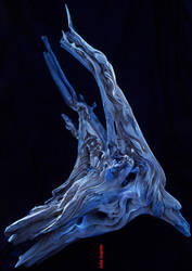 in blue light by cloistering