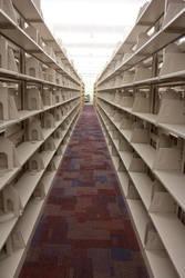 Empty Shelves by Gizmo562