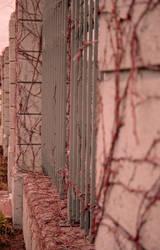 Barrier by kat-aklysm