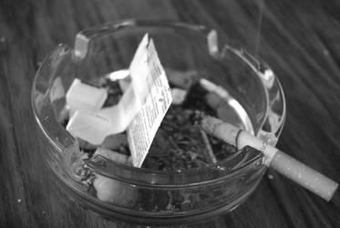 ashtray by josselin94