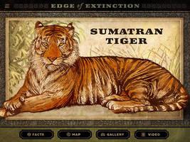 Edge of Extinction: Sumatran Tiger by IngvardtheTerrible