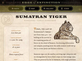 Edge of Extinction: Sumatran Tiger info by IngvardtheTerrible