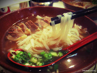 Beef Brisket Noodle by UnlimitedCuriosity