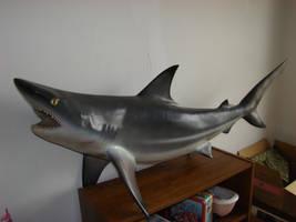 Mah Shark by SparklinBurgndy