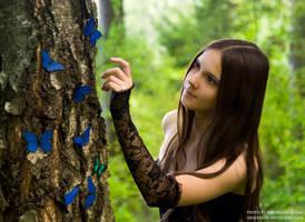 Butterfly Fairy VI by IrisErelar