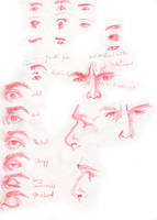 Facial Expression Study by NoidEXE