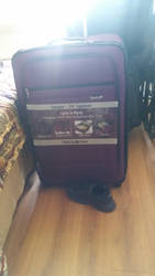 Our New Purplle Suitcase by Tiffany-Windsong