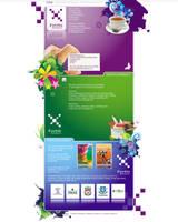 Fortis marketing ltd website by plechi