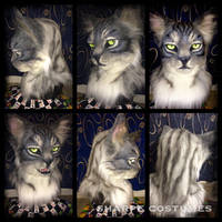 Grey tabby cat by Sharpe19