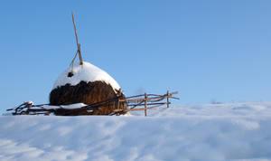 Haystack by TroneFP
