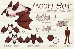 Espial World | Discovery | Moon Bat by Thalateya