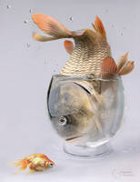 aquarium by StanOd