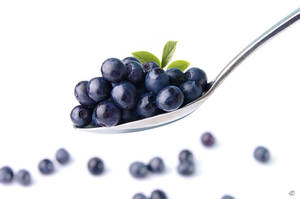 bilberry by StanOd