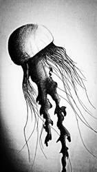 Jelly fish by razorx2