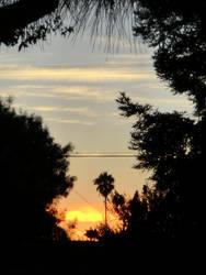 Hinden SunSet by surviverAngeloftime