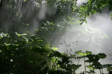 Misty by EBenson260