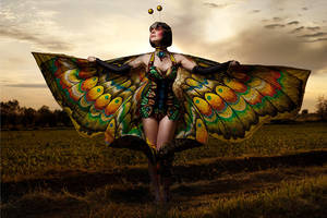 Butterfly by lucylle