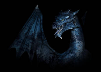 Frosty Dragon by dragonkat216