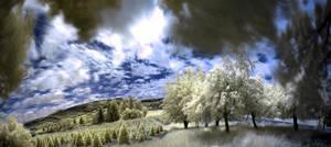 Imaginary Landscape by Vlue