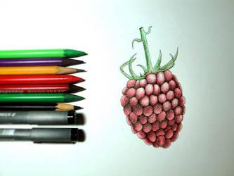raspberry by Streloklex