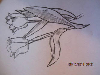 i think this is my last flower sketch by metalstalkophile14