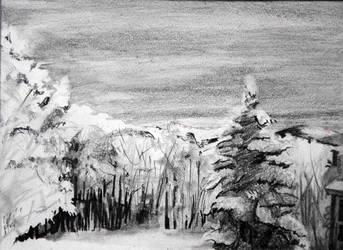 Snowfall by Combak