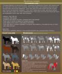 Kelephan ponies breeds - Chaimois by WoC-Brissinge