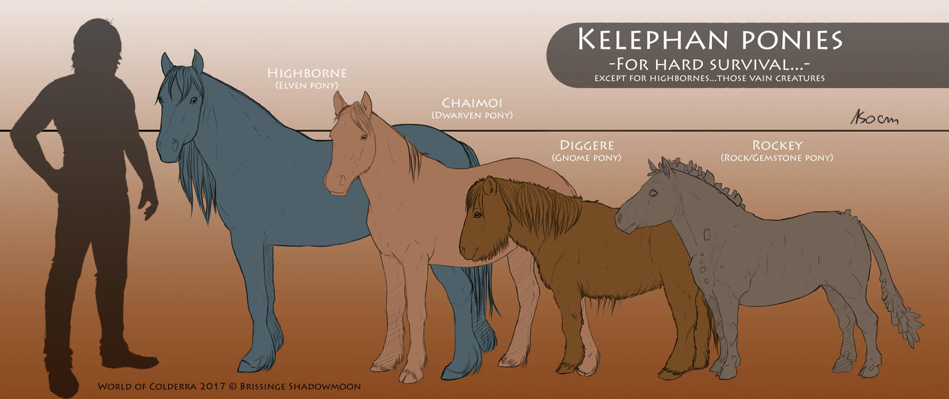 Kelephan Ponies - Basic summary by WoC-Brissinge