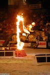 Horse-Jumping-Through-a-Ring-of-Fire--107251 by WoC-Brissinge
