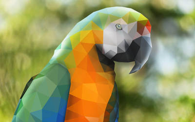 Low Poly Parrot by Justin-Whitelaw