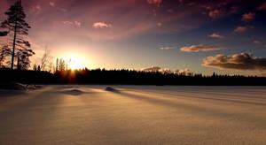 Snowshine by Kaltias