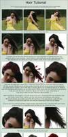 Hair Tutorial by Kechake