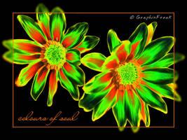 Coloured Flower by GraphixFreak