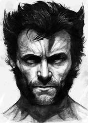 I am_Wolverine by nashKar