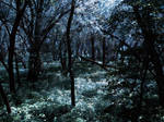 Ghostly Night by slight-art-obsession