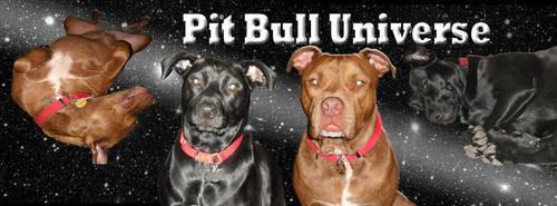 Pit Bull Universe by Pitbulluniverse