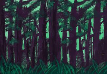 Muir Woods by Kay-TrickPie