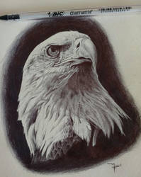 Ballpoint pen drawing by Rusalka95